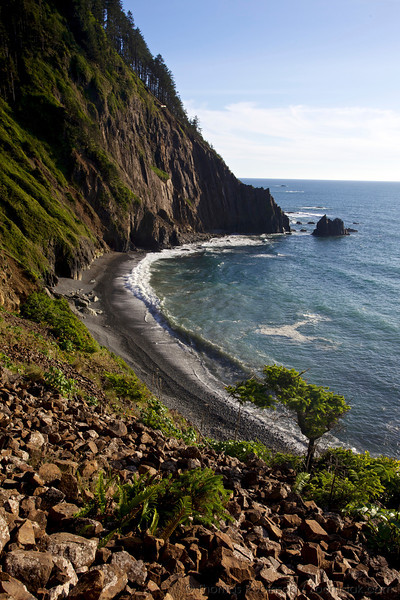 The dramatic cliffs of the Oregon Coast at Cape Falcon near Manzanita, Oregon.