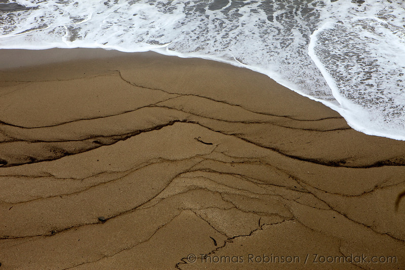 Multiple high tide lines draw a magnificent abstract art piece on the sand of Shore Acres State Park