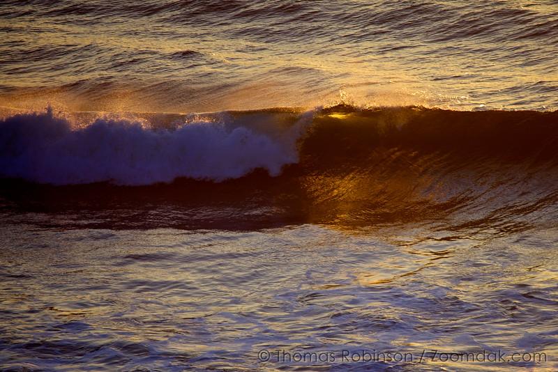 Golden Wave Crest