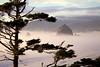 A fog bank surrounds Haystack Rock at sunset, a surreal and beautiful effect.