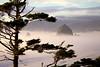 Fog Around Haystack Rock at Sunset