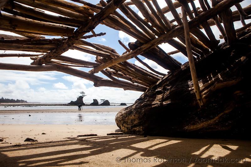 Siletz Bay Shelter