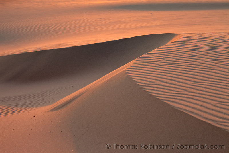 A curl of sand dune reflects the red glow of sunset on the Oregon Coast.