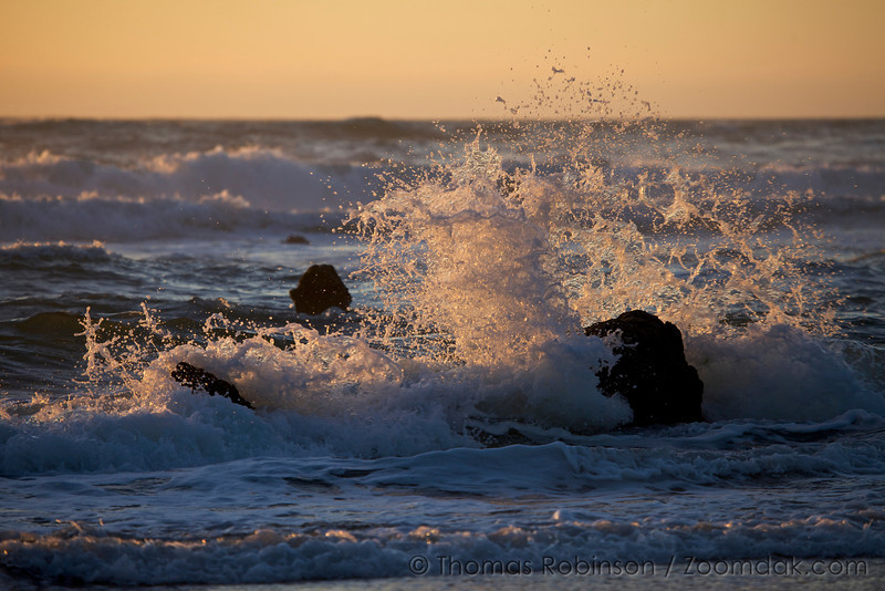 A wave splashe off a submerged stump at sunset at the Ghost Forest in Neskowin, Oregon.