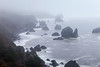 Oregon Coast Seastacks in the Mist