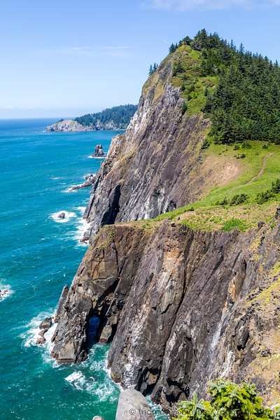 Neahkahnie Cliffs Midsummer