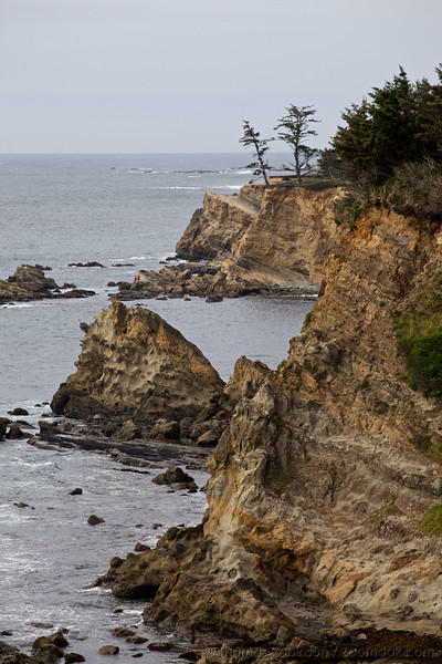 The cliffs of Shore Acres State Park dramatically separate land and sea.