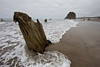 A wave washes around a stump in Neskowin, Oregon.  <br /> <br /> Though nobody knows the origins of the ghost forest, it is theorized that sometime within the last 2,000 years a cataclysmic earthquake caused this chuck of forest to drop to sea level. Then preserved by sand and mud, they are around today rather than naturally eroding.