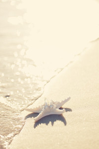 Gulf Shores 054 2