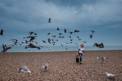 Feeding the seagulls (naughty lady) on Brighton Beach.