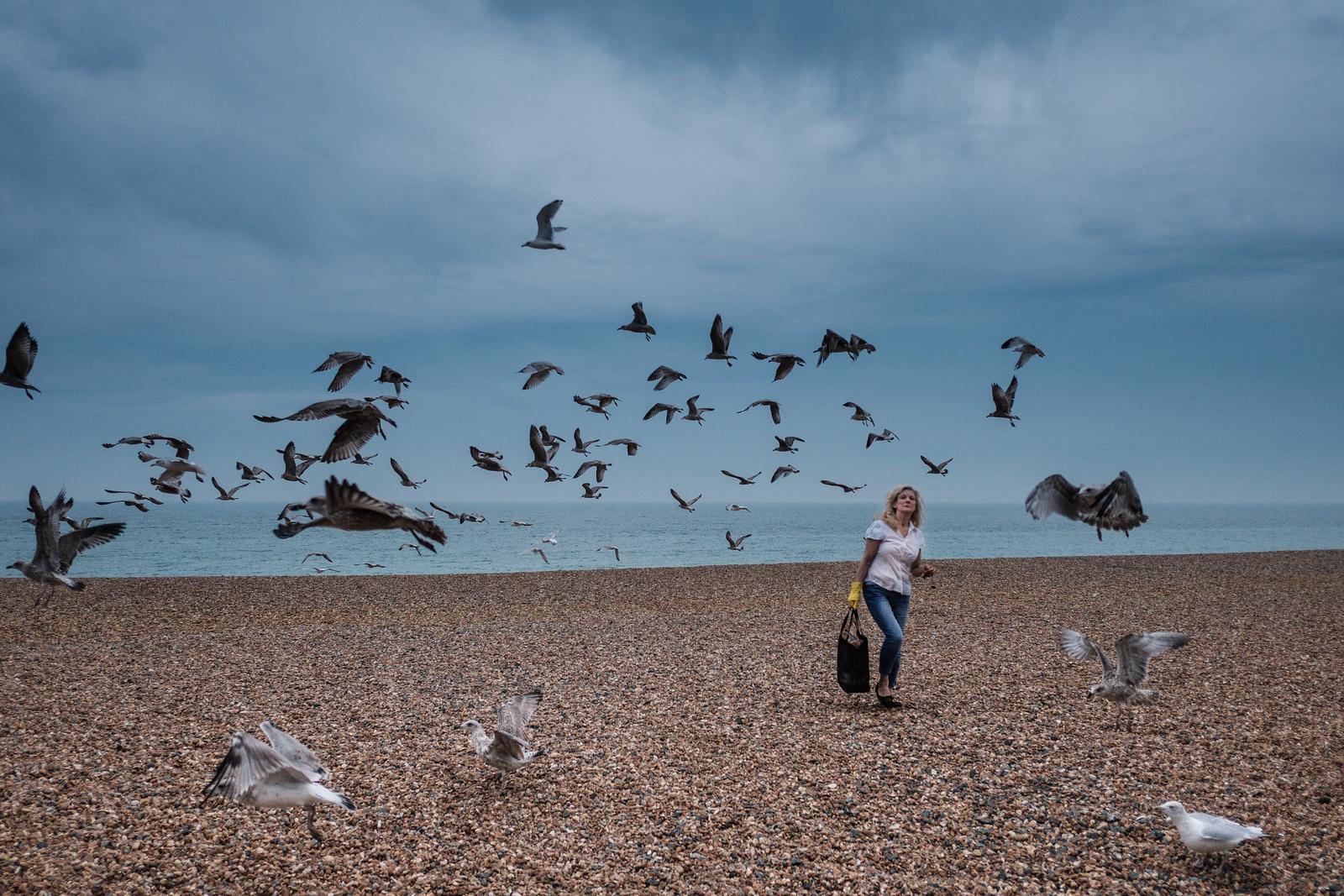 Feeding the seagulls (naughty lady) on Brighton Beach.