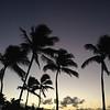 Hawaii nights….