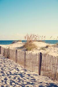 Gulf Shores 002