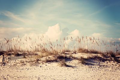 Gulf Shores 076