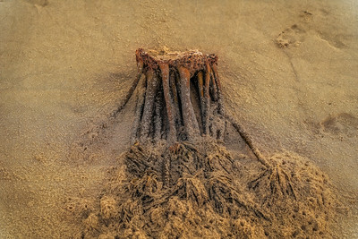Beach Art 090120