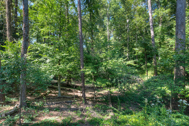 3230 Wood Valley Rd  072