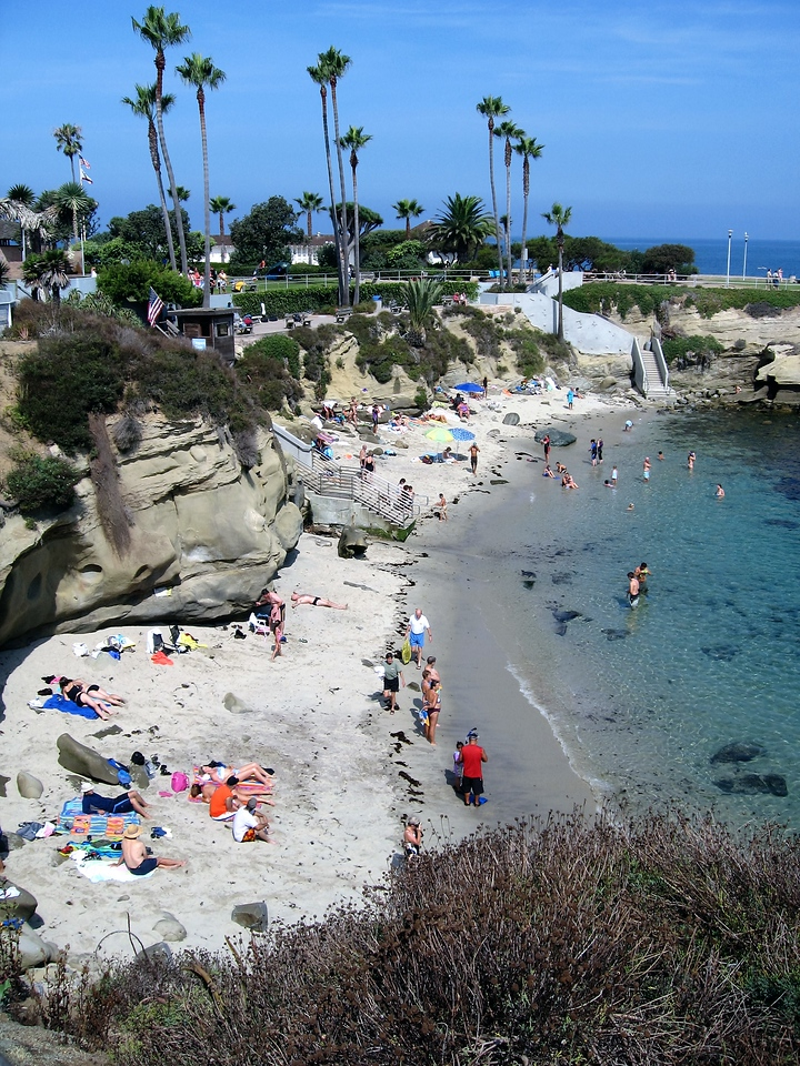 La Jolla Cove Swim