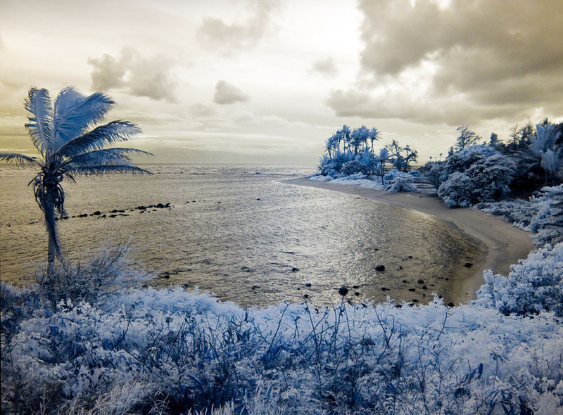 Beach-Infrared Image