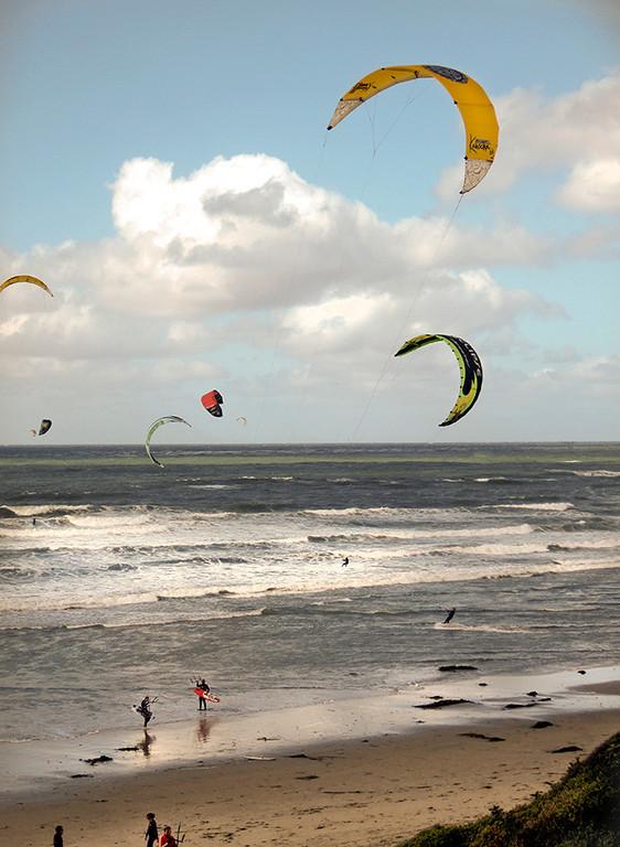 Beach Kite Flyers