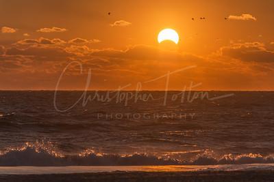 Eclipse sunrise with birds