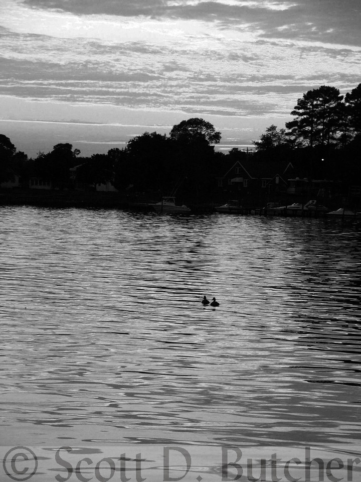 Indian River bw 05