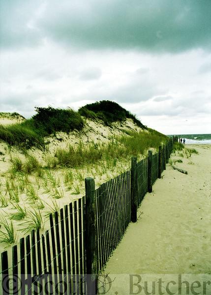 Beaches & Coastal