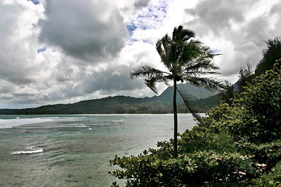 Shoreline of Hanalei Bay, north Kaua'i.