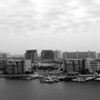 Destin Harbor View (B/W)