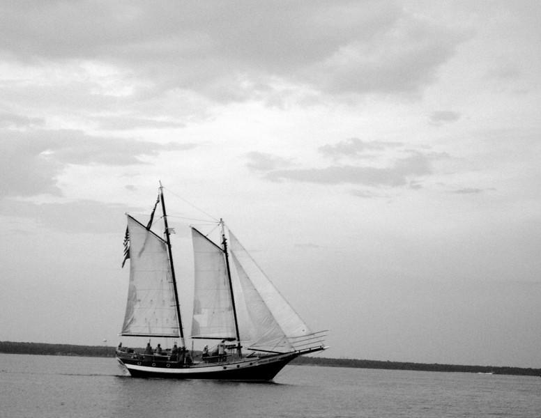 Sail Boat (B/W)