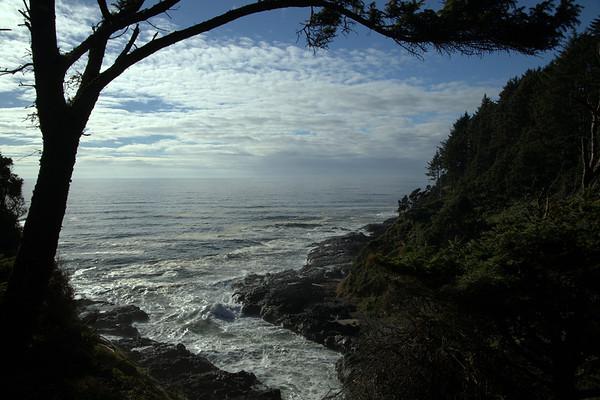 Coastal Cove.