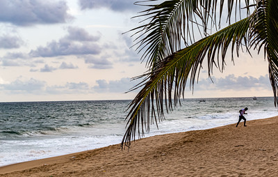 Lagos beaches, coconut goves, sandy beach,  La Campagne beach resort, Lekki, Lagos, Nigeria, West Africa, Atlantic ocean coast line, canoes on the ocean,