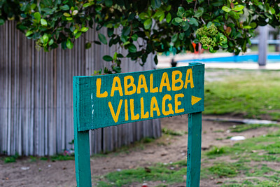 Lagos beaches, coconut goves, sandy beach, horse on the beach,  La Campagne beach resort, Lekki, Lagos, Nigeria, West Africa, Atlantic ocean coast line, canoes on the ocean, Signage on the beach, Labalaba means Butterfly in Yoruba language,