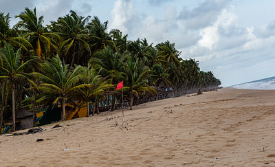 Lagos beaches, coconut goves, sandy beach, horse on the beach,  La Campagne beach resort, Lekki, Lagos, Nigeria, West Africa, Atlantic ocean coast line, canoes on the ocean,