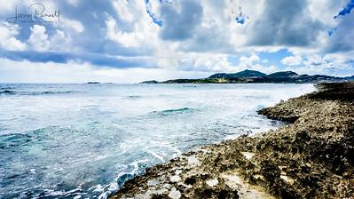 Coconut Grove Coastline - Saint Martin