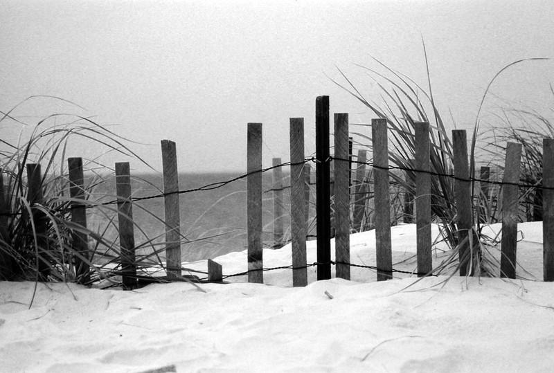 Beach001d