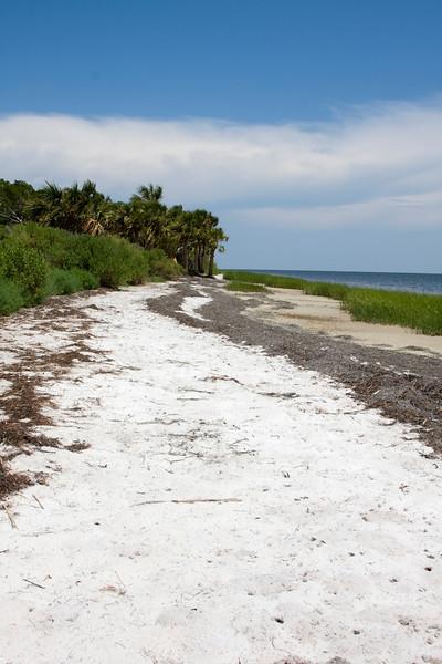 Beach006a(6057)