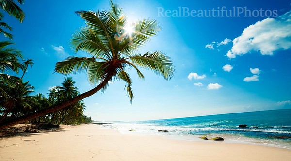 Beach in British Virgin Islands