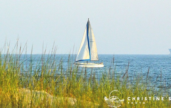 Sailing by Point Lookout