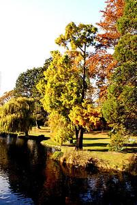 Beacon Hill Park, Victoria, BC