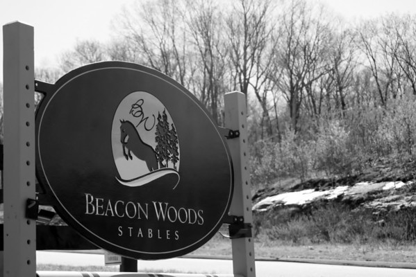 Beacon Woods Stables 2014