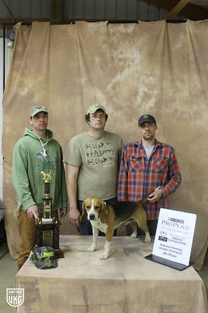 Beagle Nationals