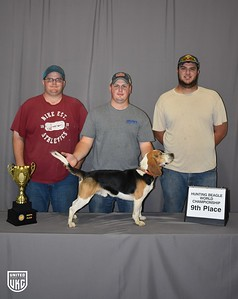Hunting Beagle World 9th Place
