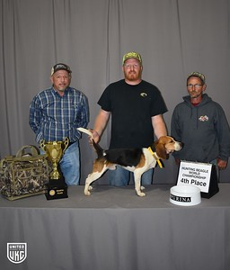 Hunting Beagle World 4th Place