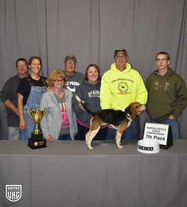 Hunting Beagle World 7th Place