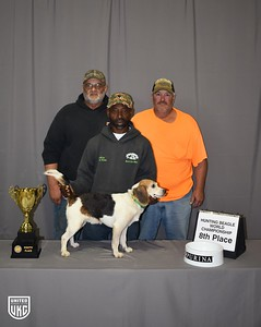 Hunting Beagle World 8th Place