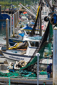 "Seemed most of the fishing fleet was 'in""..."