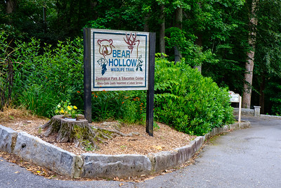 Bear Hollow Zoo