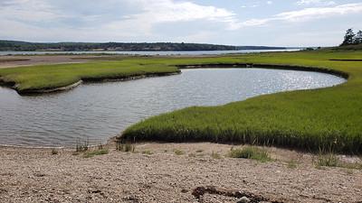 Salt marsh and salt pond at eastern end of island