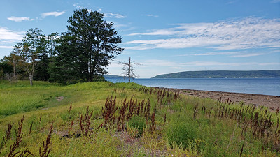 Bear Island north shore with Annapolis Basin and Digby Gut in background