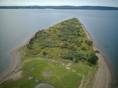 Aerial showing wooded western end of island where there are nesting colonies of great blue herons, double-crested cormorants, black-backed and herring gulls. Plus breeding belted kingfisher, yellow-rumped warbler, yellow warbler, savannah sparrow, common yellowthroat, chestnut-sided warbler, spotted sandpiper, Canada goose, etc.